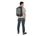 Showdown Laptop Backpack Model